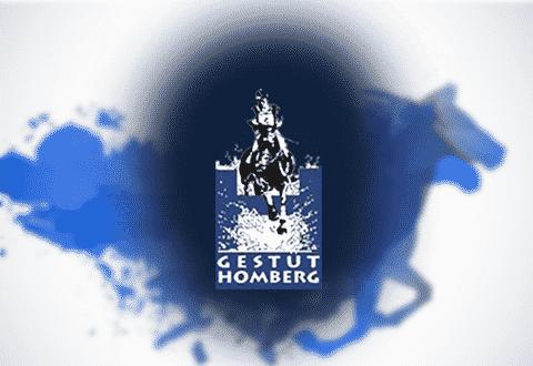 Gestüt Homberg Schweiz